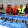 Skitt fiske 2007 KL